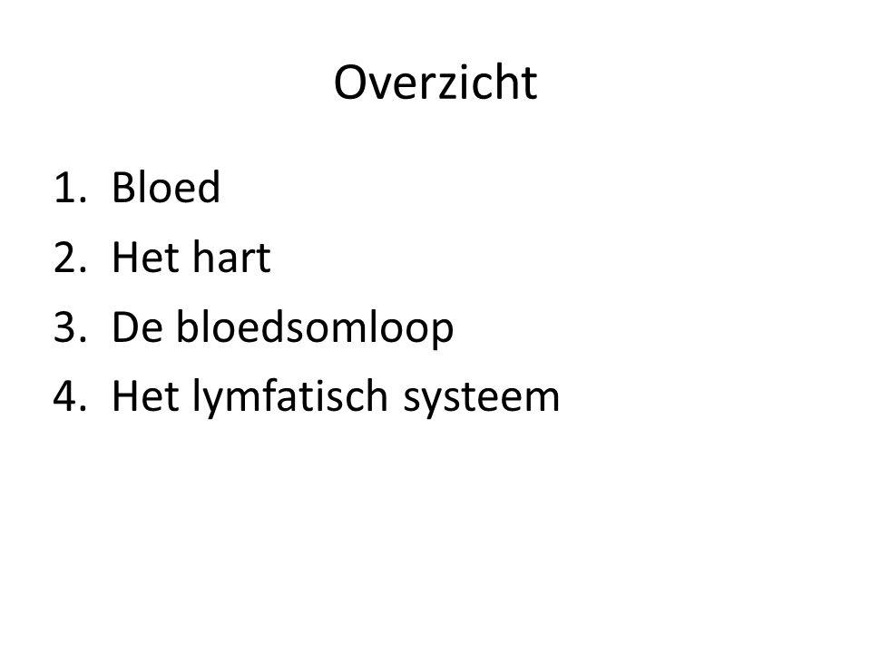 De bloedsomloop • Kleine bloedsomloop – Brengt bloed van het hart naar de longen en weer naar het hart • Grote bloedsomloop – Brengt bloed van hart naar organen en terug naar hart