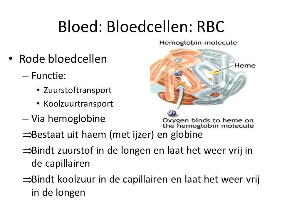 Bloed: Bloedcellen: RBC • Rode bloedcellen – Functie: • Zuurstoftransport • Koolzuurtransport – Via hemoglobine  Bestaat uit haem (met ijzer) en globine  Bindt zuurstof in de longen en laat het weer vrij in de capillairen  Bindt koolzuur in de capillairen en laat het weer vrij in de longen