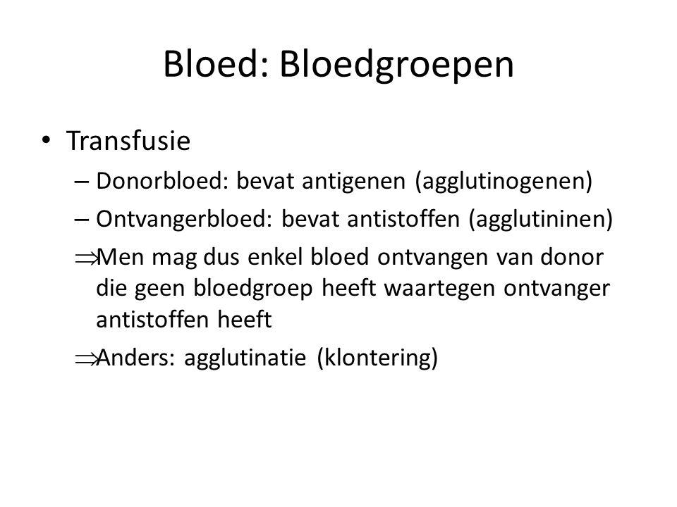 Bloed: Bloedgroepen • Transfusie – Donorbloed: bevat antigenen (agglutinogenen) – Ontvangerbloed: bevat antistoffen (agglutininen)  Men mag dus enkel bloed ontvangen van donor die geen bloedgroep heeft waartegen ontvanger antistoffen heeft  Anders: agglutinatie (klontering)