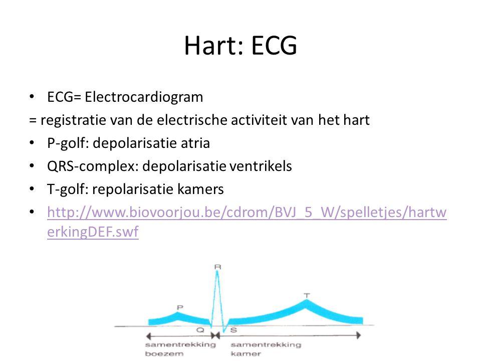 Hart: ECG • ECG= Electrocardiogram = registratie van de electrische activiteit van het hart • P-golf: depolarisatie atria • QRS-complex: depolarisatie ventrikels • T-golf: repolarisatie kamers • http://www.biovoorjou.be/cdrom/BVJ_5_W/spelletjes/hartw erkingDEF.swf http://www.biovoorjou.be/cdrom/BVJ_5_W/spelletjes/hartw erkingDEF.swf