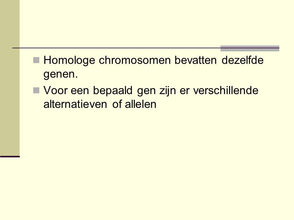  Homologe chromosomen bevatten dezelfde genen.  Voor een bepaald gen zijn er verschillende alternatieven of allelen