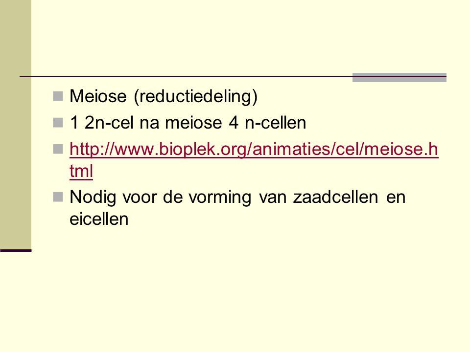  Meiose (reductiedeling)  1 2n-cel na meiose 4 n-cellen  http://www.bioplek.org/animaties/cel/meiose.h tml http://www.bioplek.org/animaties/cel/mei