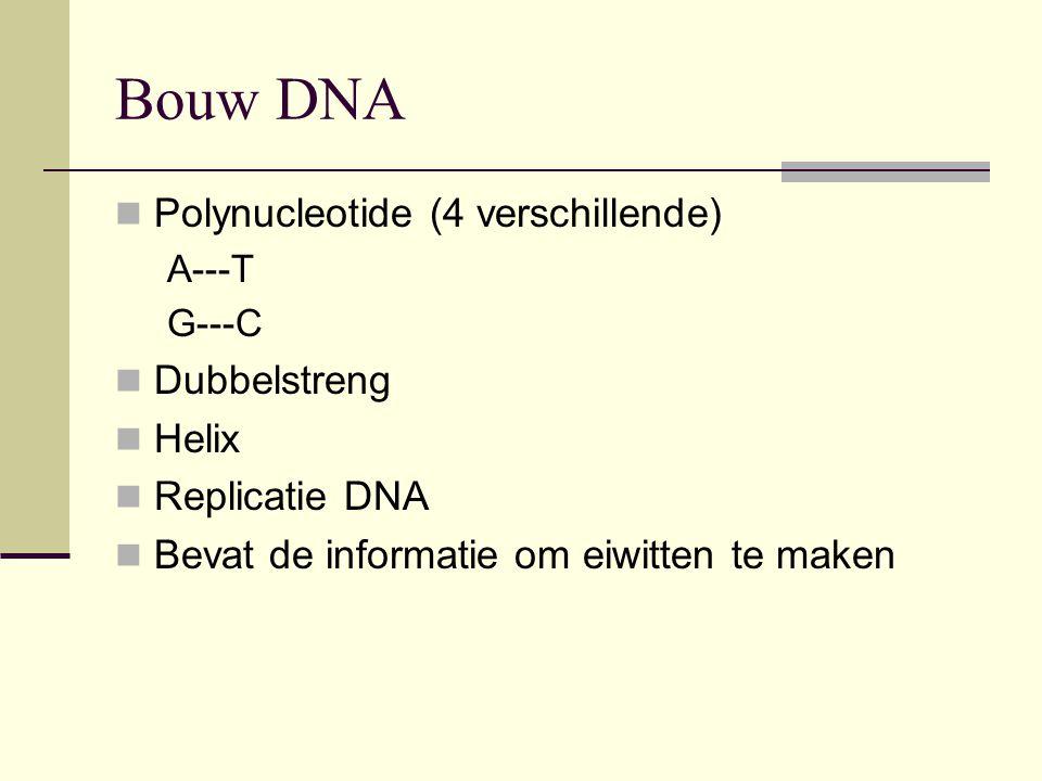 Bouw DNA  Polynucleotide (4 verschillende) A---T G---C  Dubbelstreng  Helix  Replicatie DNA  Bevat de informatie om eiwitten te maken