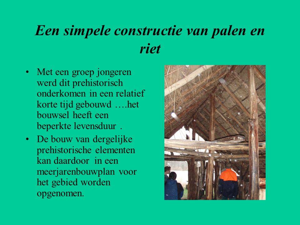 Een simpele constructie van palen en riet •Met een groep jongeren werd dit prehistorisch onderkomen in een relatief korte tijd gebouwd ….het bouwsel h
