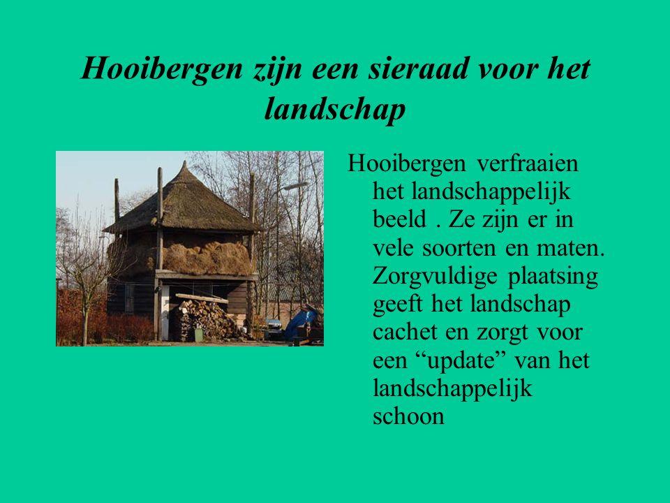 Hooibergen zijn een sieraad voor het landschap Hooibergen verfraaien het landschappelijk beeld. Ze zijn er in vele soorten en maten. Zorgvuldige plaat