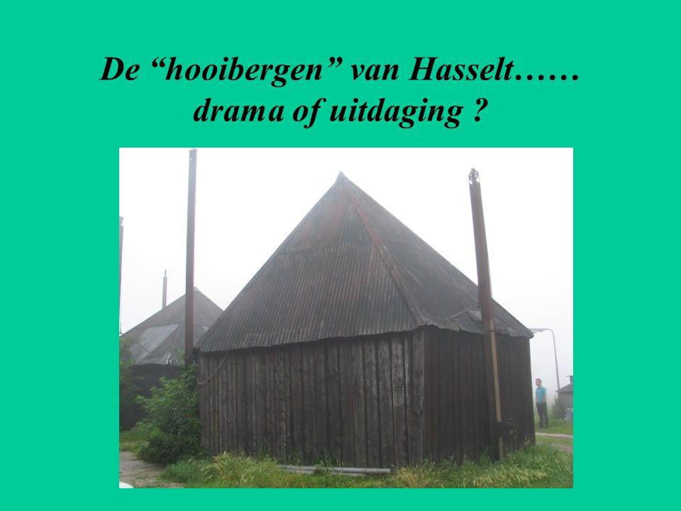 """De """"hooibergen"""" van Hasselt…… drama of uitdaging ?"""