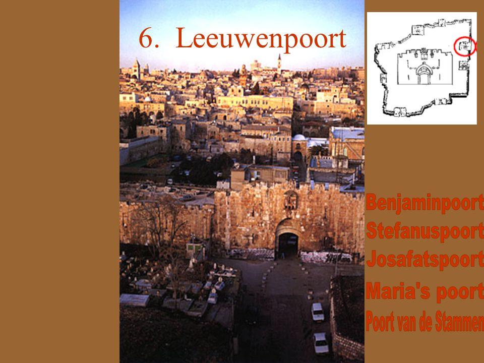 6. Leeuwenpoort