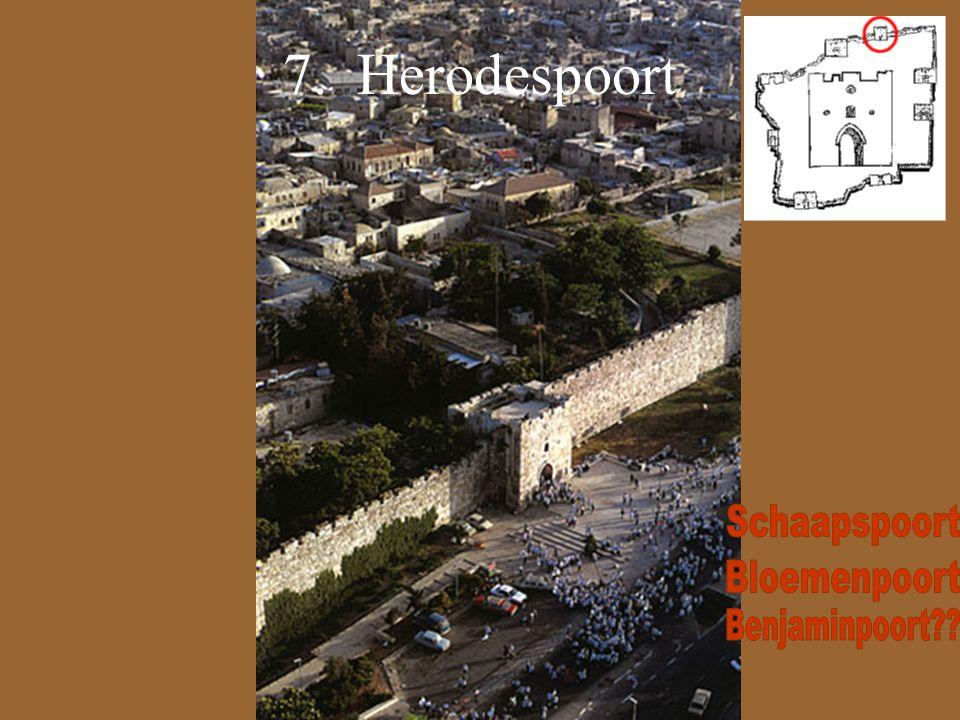 7. Herodespoort
