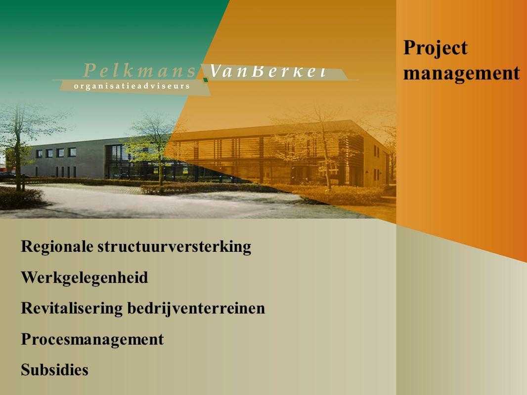 Project management Regionale structuurversterking Werkgelegenheid Revitalisering bedrijventerreinen Procesmanagement Subsidies