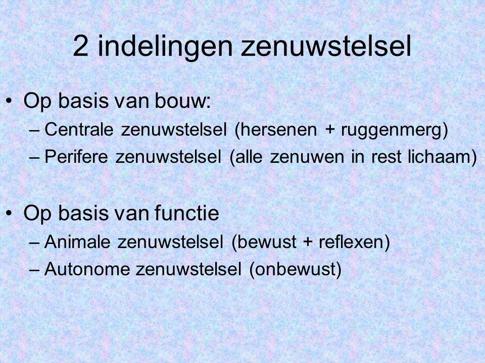 2 indelingen zenuwstelsel •Op basis van bouw: –Centrale zenuwstelsel (hersenen + ruggenmerg) –Perifere zenuwstelsel (alle zenuwen in rest lichaam) •Op