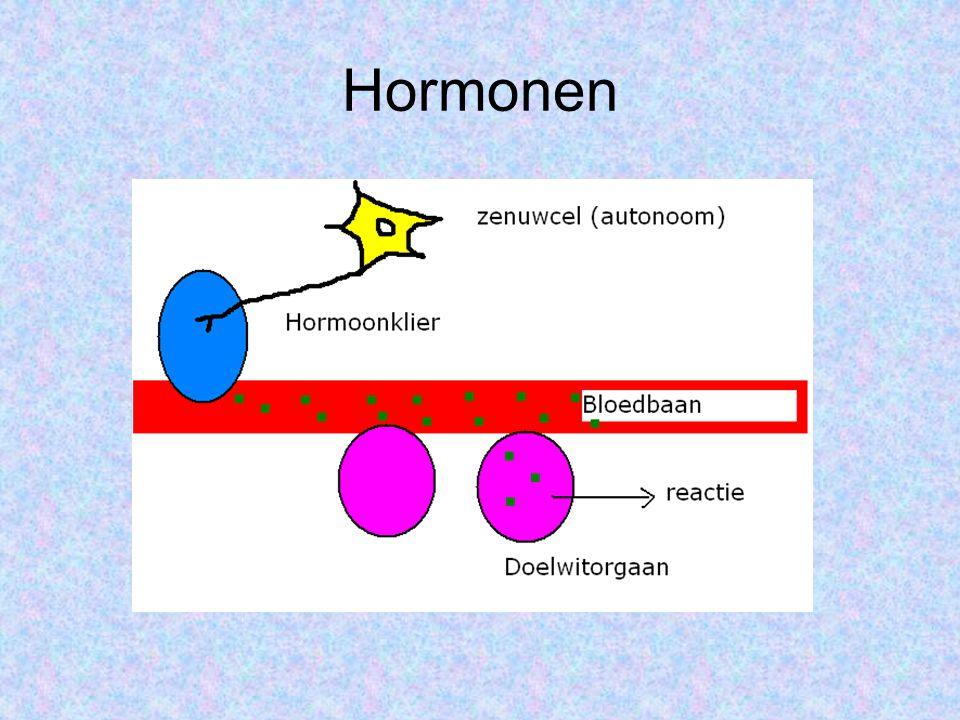 Hormoonklieren