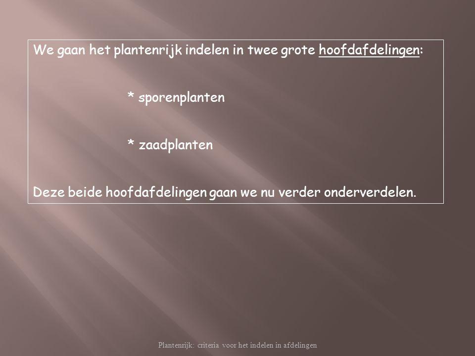 Plantenrijk: criteria voor het indelen in afdelingen We gaan het plantenrijk indelen in twee grote hoofdafdelingen: * sporenplanten * zaadplanten Deze