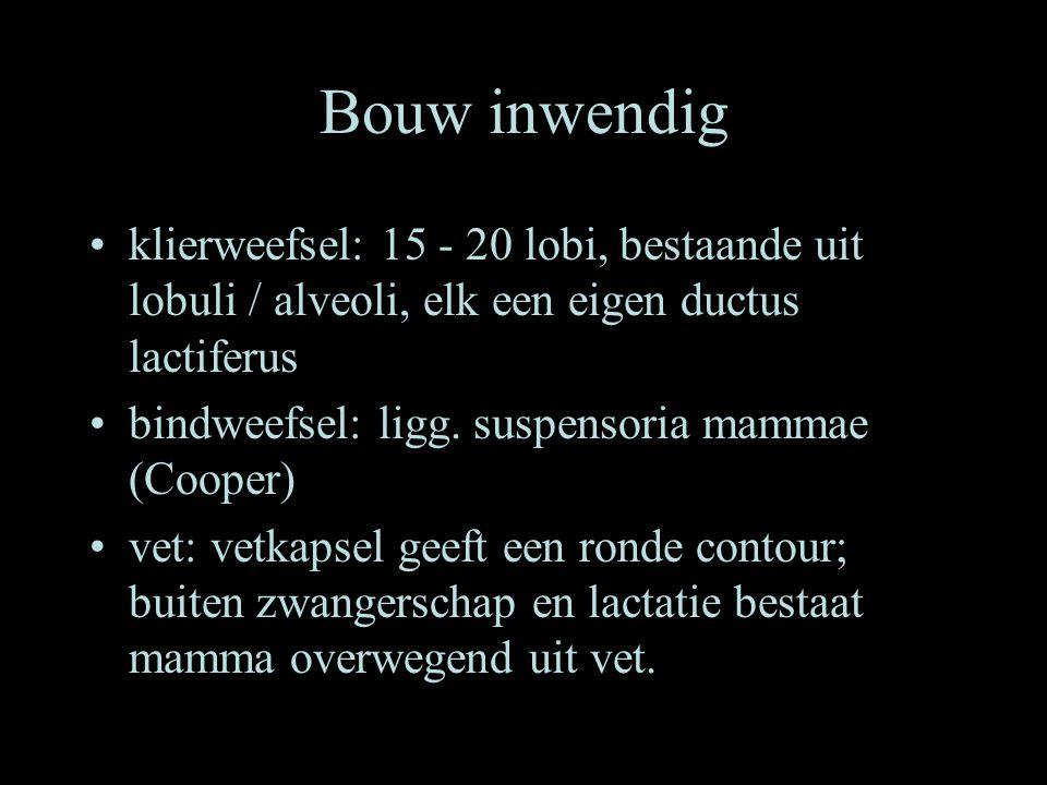 Bouw inwendig •klierweefsel: 15 - 20 lobi, bestaande uit lobuli / alveoli, elk een eigen ductus lactiferus •bindweefsel: ligg. suspensoria mammae (Coo