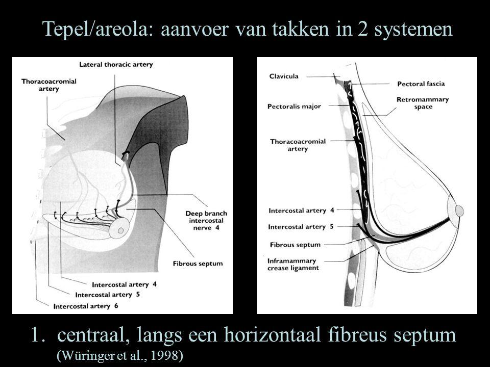 Tepel/areola: aanvoer van takken in 2 systemen 1.centraal, langs een horizontaal fibreus septum (Würinger et al., 1998)
