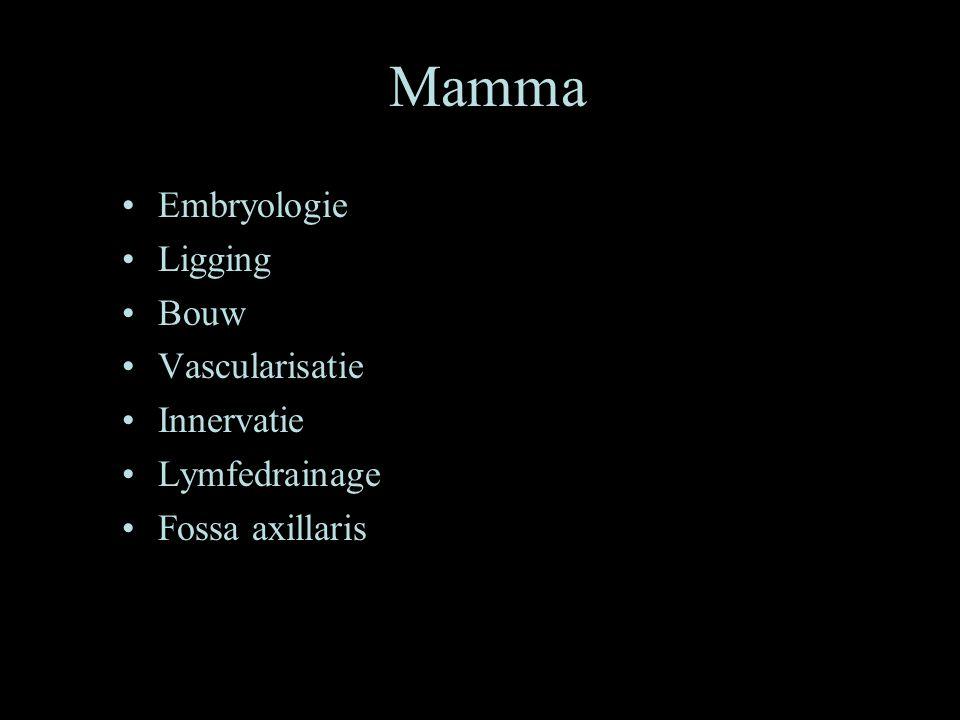 Mamma •Embryologie •Ligging •Bouw •Vascularisatie •Innervatie •Lymfedrainage •Fossa axillaris