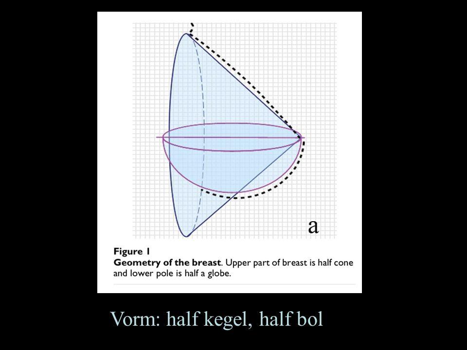Vorm: half kegel, half bol