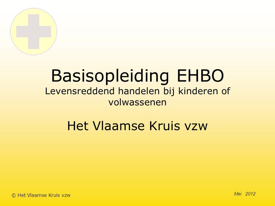 Basisopleiding EHBO Levensreddend handelen bij kinderen of volwassenen Het Vlaamse Kruis vzw Mei 2012 © Het Vlaamse Kruis vzw