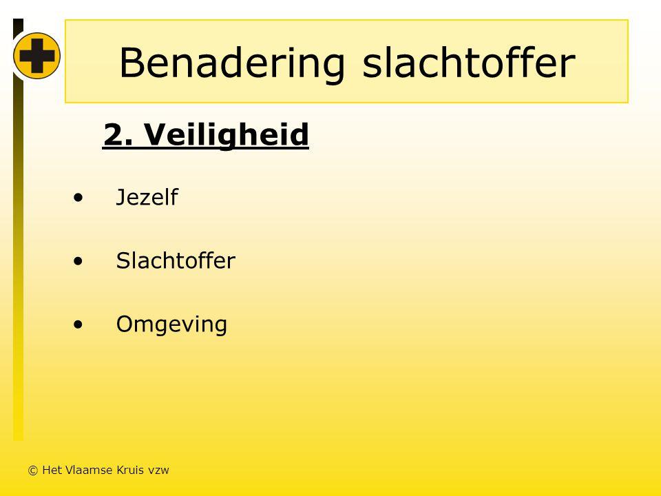 Benadering slachtoffer 2. Veiligheid • Jezelf • Slachtoffer • Omgeving © Het Vlaamse Kruis vzw
