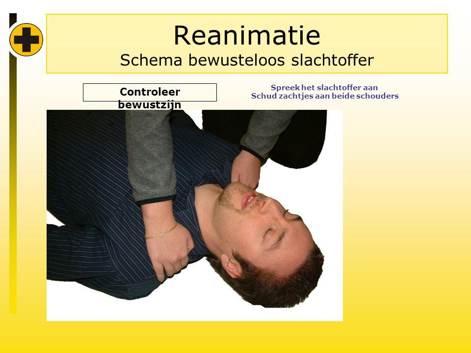 Reanimatie Schema bewusteloos slachtoffer Controleer bewustzijn Spreek het slachtoffer aan Schud zachtjes aan beide schouders
