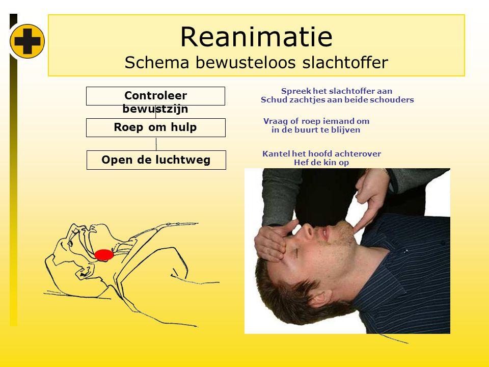 Reanimatie Schema bewusteloos slachtoffer Controleer bewustzijn Roep om hulp Vraag of roep iemand om in de buurt te blijven Spreek het slachtoffer aan Schud zachtjes aan beide schouders Open de luchtweg Kantel het hoofd achterover Hef de kin op