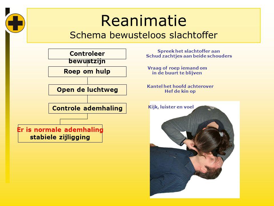 Reanimatie Schema bewusteloos slachtoffer Controleer bewustzijn Controle ademhaling Er is normale ademhaling stabiele zijligging Kijk, luister en voel Roep om hulp Vraag of roep iemand om in de buurt te blijven Open de luchtweg Kantel het hoofd achterover Hef de kin op Spreek het slachtoffer aan Schud zachtjes aan beide schouders
