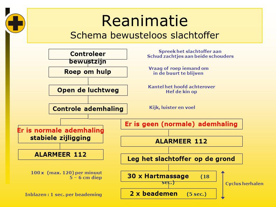 Reanimatie Schema bewusteloos slachtoffer Er is geen (normale) ademhaling ALARMEER 112 Leg het slachtoffer op de grond 30 x Hartmassage (18 sec.) 100 x (max.