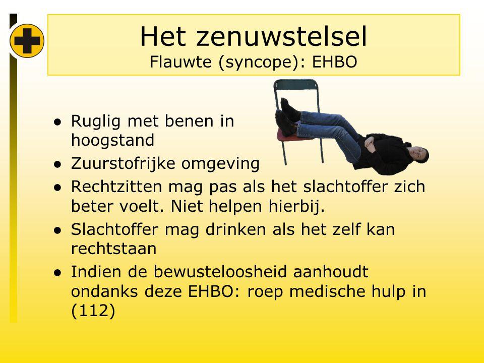 Het zenuwstelsel Flauwte (syncope): EHBO ● Ruglig met benen in hoogstand ● Zuurstofrijke omgeving ● Rechtzitten mag pas als het slachtoffer zich beter voelt.