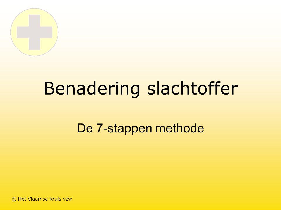 Benadering slachtoffer De 7-stappen methode © Het Vlaamse Kruis vzw
