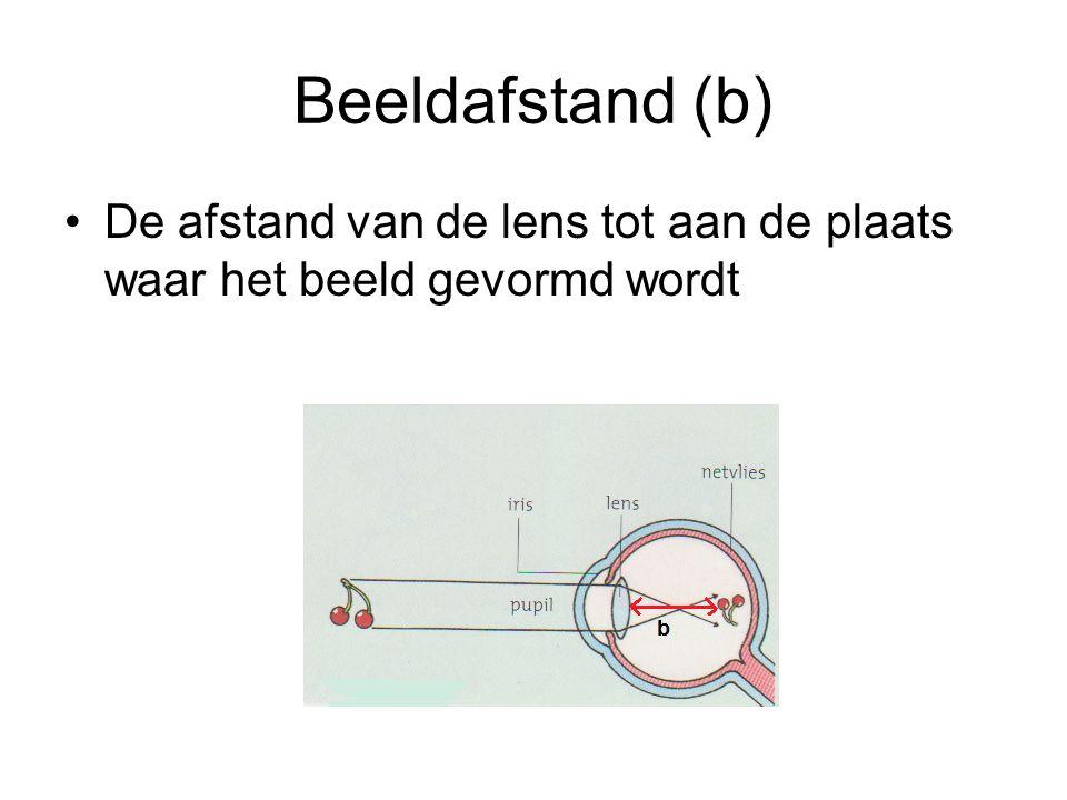 Beeldafstand (b) •De afstand van de lens tot aan de plaats waar het beeld gevormd wordt