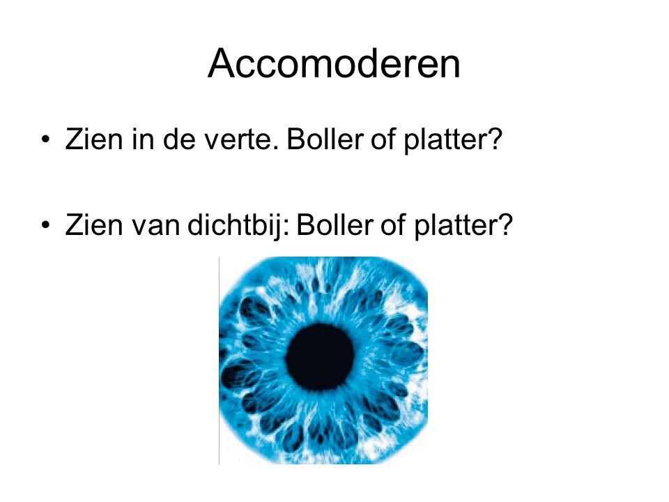 Accomoderen •Zien in de verte. Boller of platter? •Zien van dichtbij: Boller of platter?