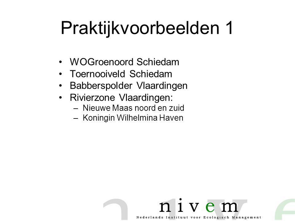 Praktijkvoorbeelden 1 •WOGroenoord Schiedam •Toernooiveld Schiedam •Babberspolder Vlaardingen •Rivierzone Vlaardingen: –Nieuwe Maas noord en zuid –Koningin Wilhelmina Haven
