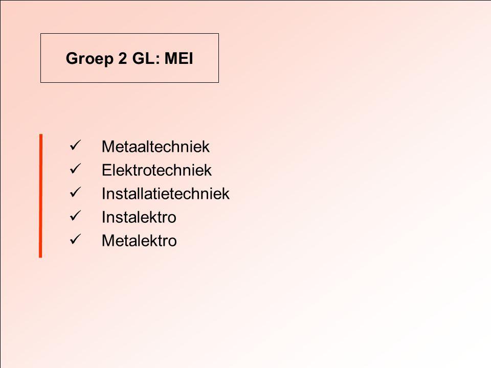 Groep 2 GL: MEI  Metaaltechniek  Elektrotechniek  Installatietechniek  Instalektro  Metalektro