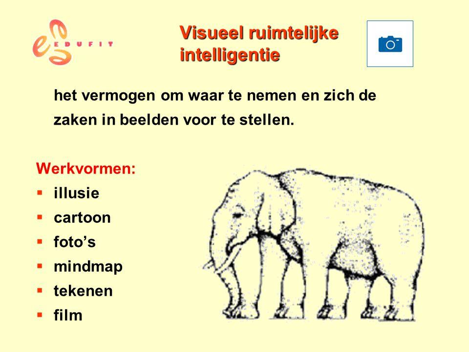 Visueel ruimtelijke intelligentie het vermogen om waar te nemen en zich de zaken in beelden voor te stellen. Werkvormen:  illusie  cartoon  foto's