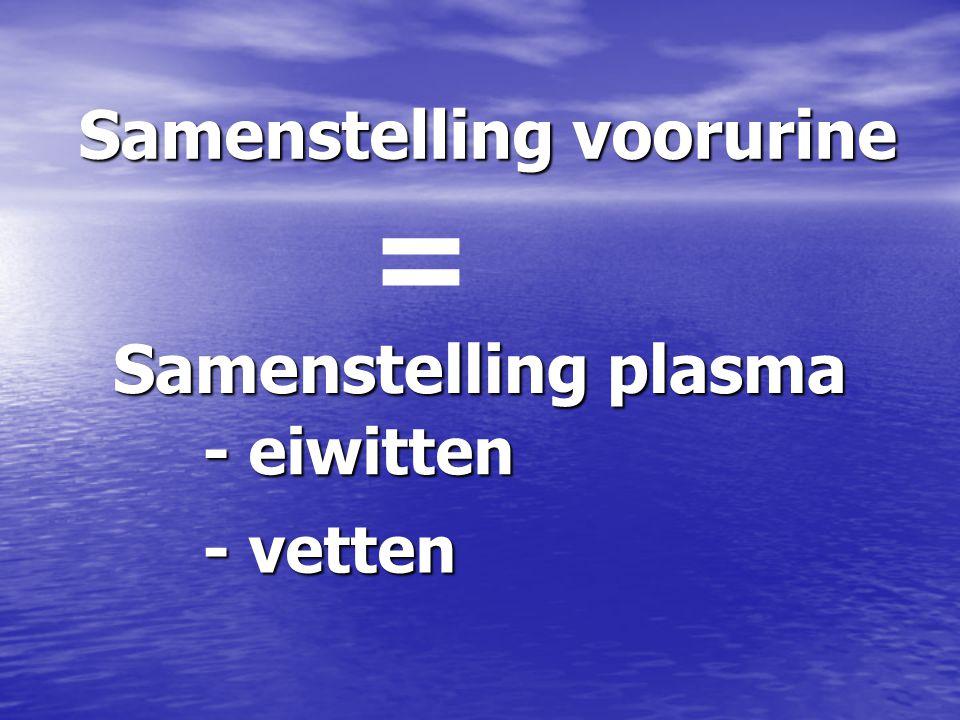 Samenstelling voorurine = Samenstelling plasma - eiwitten - vetten