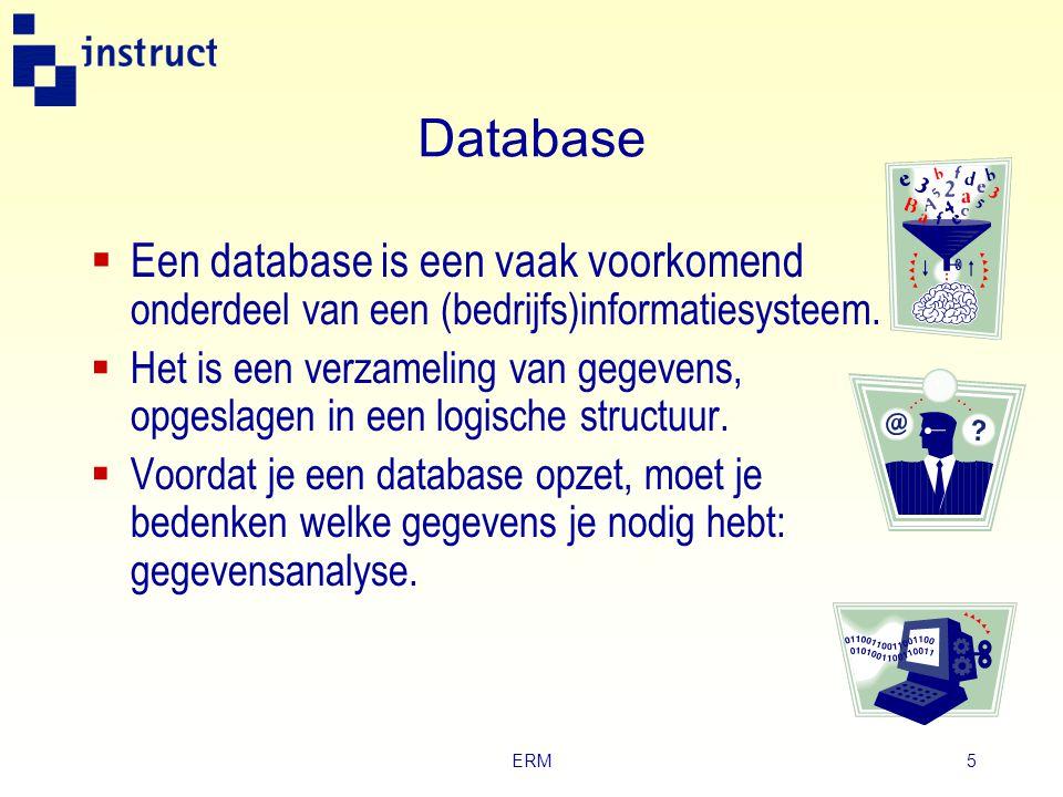 ERM5 Database  Een database is een vaak voorkomend onderdeel van een (bedrijfs)informatiesysteem.