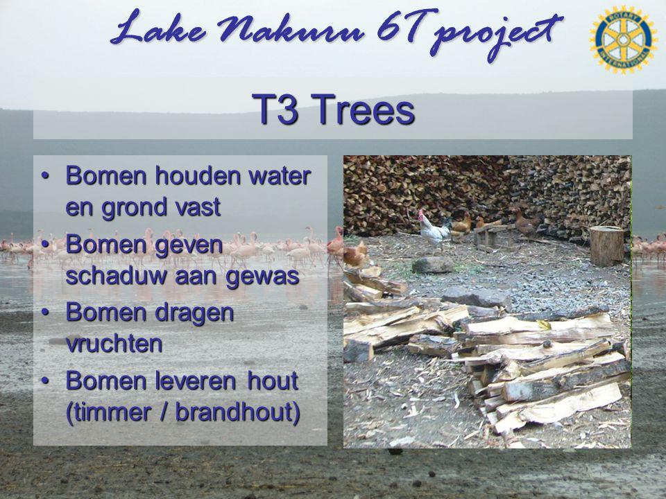 Lake Nakuru 6T project T3 Trees •Bomen houden water en grond vast •Bomen geven schaduw aan gewas •Bomen dragen vruchten •Bomen leveren hout (timmer / brandhout) Banaan Limoen