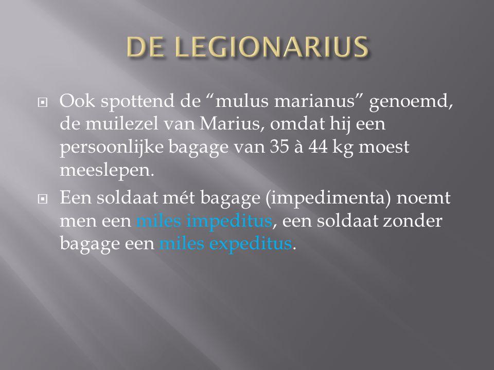 """ Ook spottend de """"mulus marianus"""" genoemd, de muilezel van Marius, omdat hij een persoonlijke bagage van 35 à 44 kg moest meeslepen.  Een soldaat mé"""
