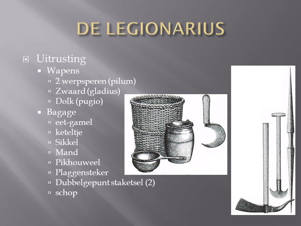  Uitrusting  Wapens  2 werpsperen (pilum)  Zwaard (gladius)  Dolk (pugio)  Bagage  eet-gamel  keteltje  Sikkel  Mand  Pikhouweel  Plaggens