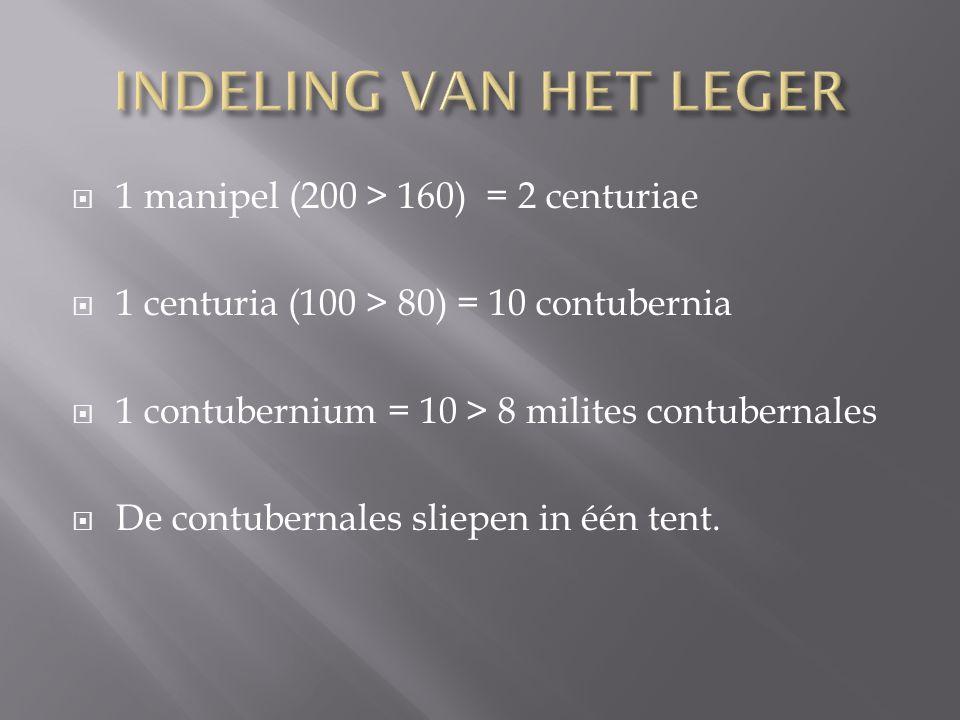  1 manipel (200 > 160) = 2 centuriae  1 centuria (100 > 80) = 10 contubernia  1 contubernium = 10 > 8 milites contubernales  De contubernales slie