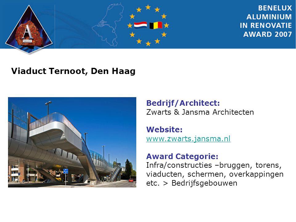 Viaduct Ternoot, Den Haag Bedrijf/Architect: Zwarts & Jansma Architecten Website: www.zwarts.jansma.nl Award Categorie: Infra/constructies –bruggen, t