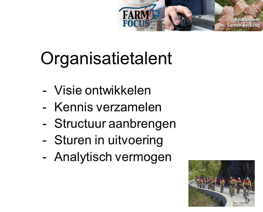 Organisatietalent - Visie ontwikkelen - Kennis verzamelen - Structuur aanbrengen - Sturen in uitvoering - Analytisch vermogen