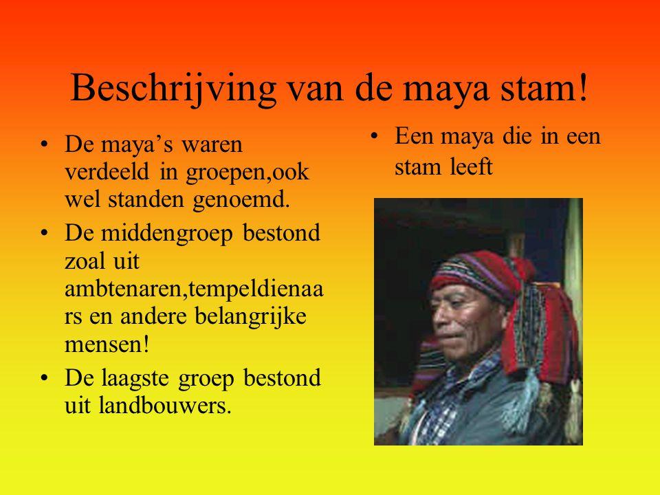 De Maya's •1=beschrijving van de maya stam.
