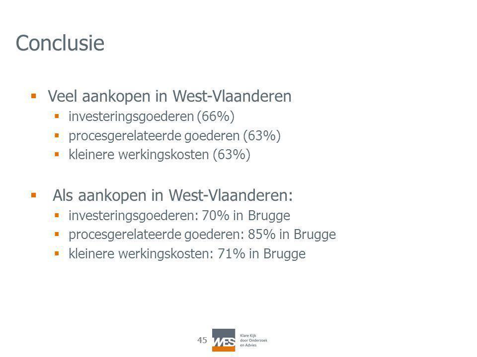 45 Conclusie  Veel aankopen in West-Vlaanderen  investeringsgoederen (66%)  procesgerelateerde goederen (63%)  kleinere werkingskosten (63%)  Als aankopen in West-Vlaanderen:  investeringsgoederen: 70% in Brugge  procesgerelateerde goederen: 85% in Brugge  kleinere werkingskosten: 71% in Brugge