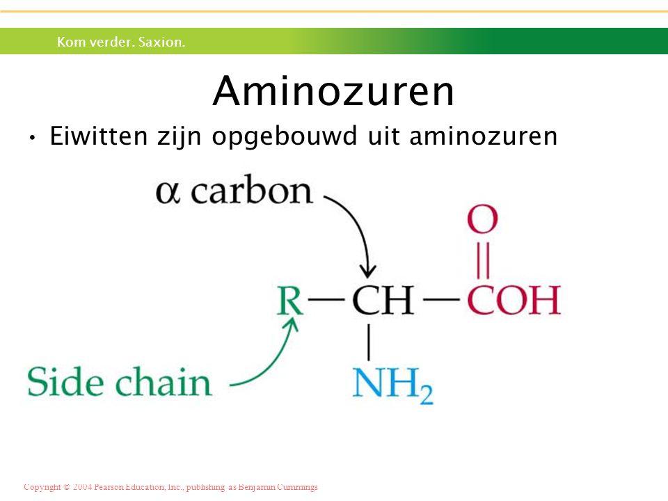 Kom verder. Saxion. Copyright © 2004 Pearson Education, Inc., publishing as Benjamin Cummings Aminozuren •Eiwitten zijn opgebouwd uit aminozuren