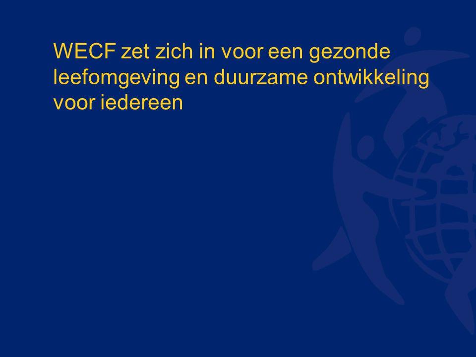 WECF zet zich in voor een gezonde leefomgeving en duurzame ontwikkeling voor iedereen
