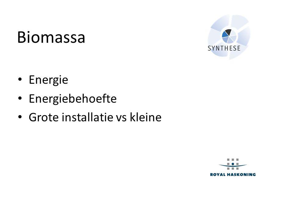 Biomassa • Energie • Energiebehoefte • Grote installatie vs kleine
