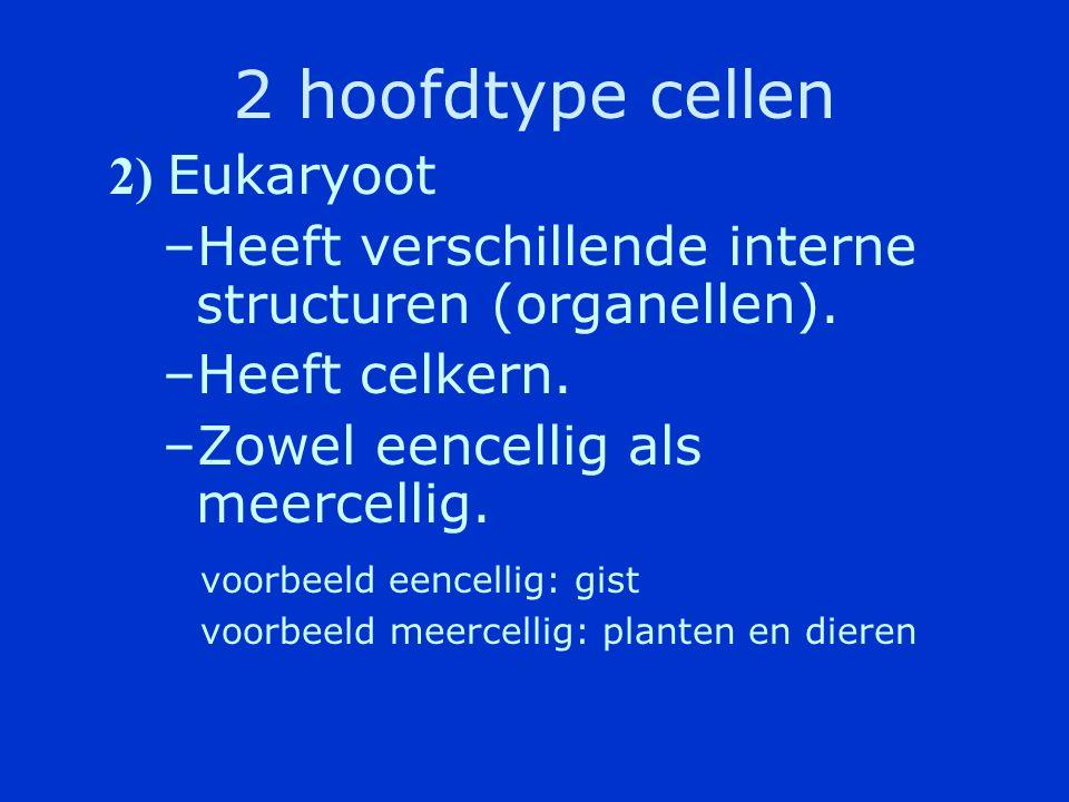 2 hoofdtype cellen 1 ) Prokaryoot –Zeer eenvoudig van bouw –Bezit geen echte kern.