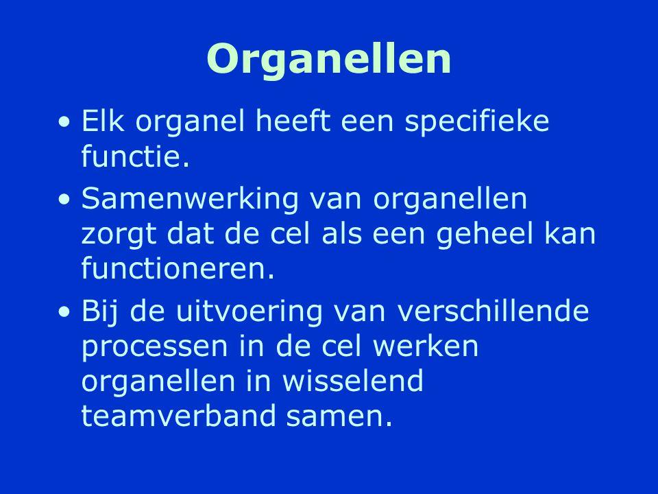 Opbouw van de cel •Cellen zijn de bouwstenen van weefsels en organen.