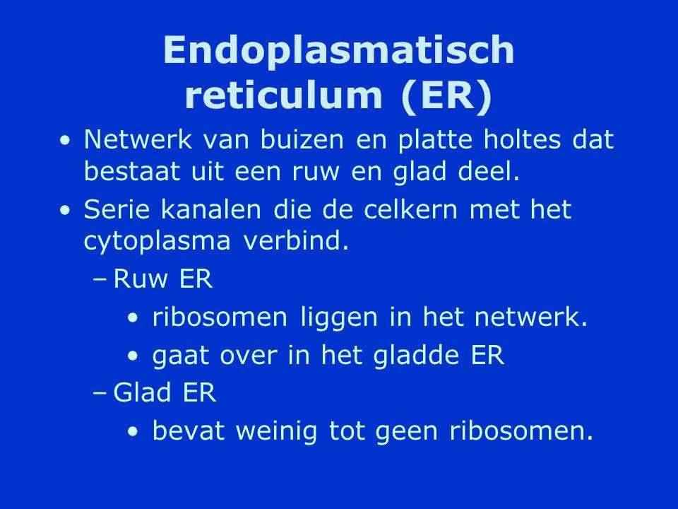 Cytoplasma •Vloeistof waarin alle celonderdelen liggen •Ideaal oplosmiddel voor stoffen die de cel nodig heeft om zijn werking te kunnen uitvoeren.