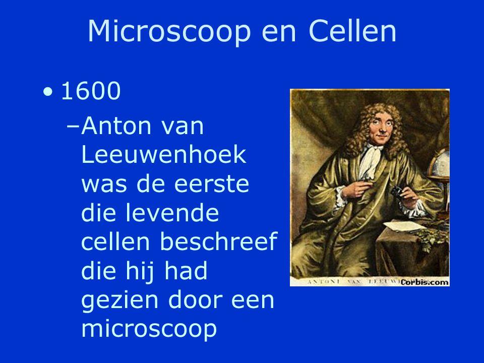 De geschiedenis van de Cel •De cel –De basis eenheid van een organisme –De cel hebben we ontdekt door de uitvinding van de microscoop
